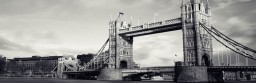 bridge-256x83